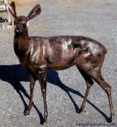 Deer Statue - Doe