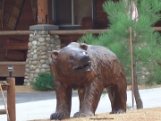 Bear - Lifesize Grizzly
