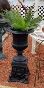 Fluted Urn on Shell Base - (Regular)