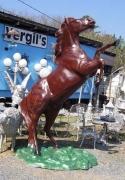 Horse - Mustang Rearing